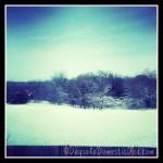 Texas White Christmas and Winter Wonderland