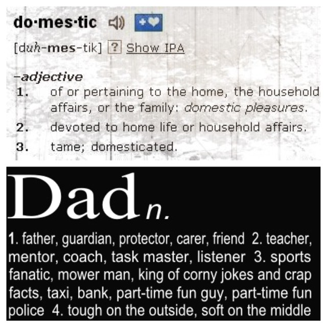 Domestic Dad