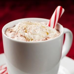 Hot Chocolate Milk Unleashed