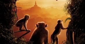 Disney Monkey Kingdom
