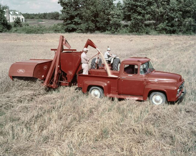 1956-Ford-F-100-pickup-with-tractor-and-combine-neg-C800-33