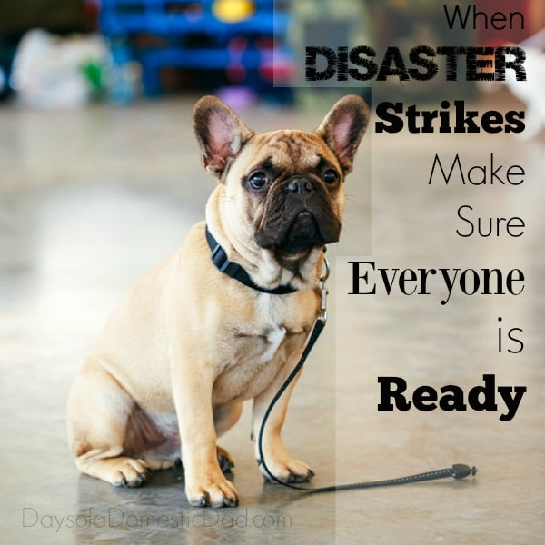 Purina Disaster Ready Doggy Disaster Kit