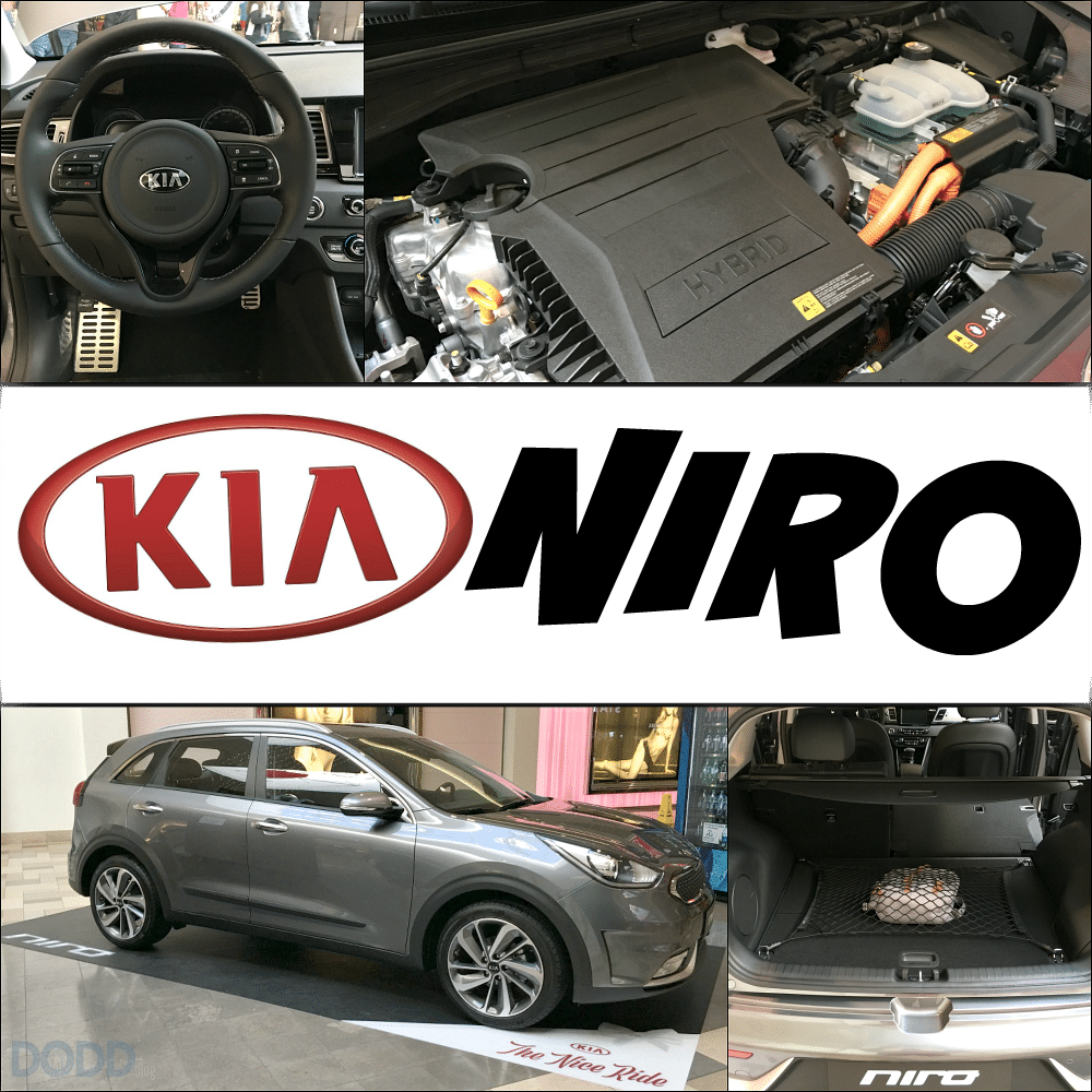 Kia Niro Mall Events