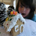 See What Happens When We Celebrate National Gingerbread House Day