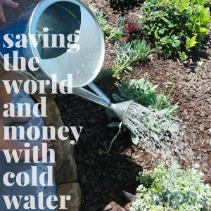 Saving the World and Money with Cold Water