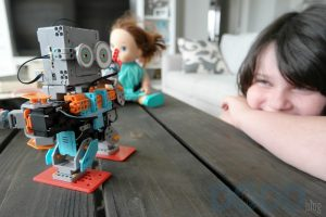 Teaching Science, Technology, Engineering and Math Through Robotics – Buzzbot and Muttbot Kit