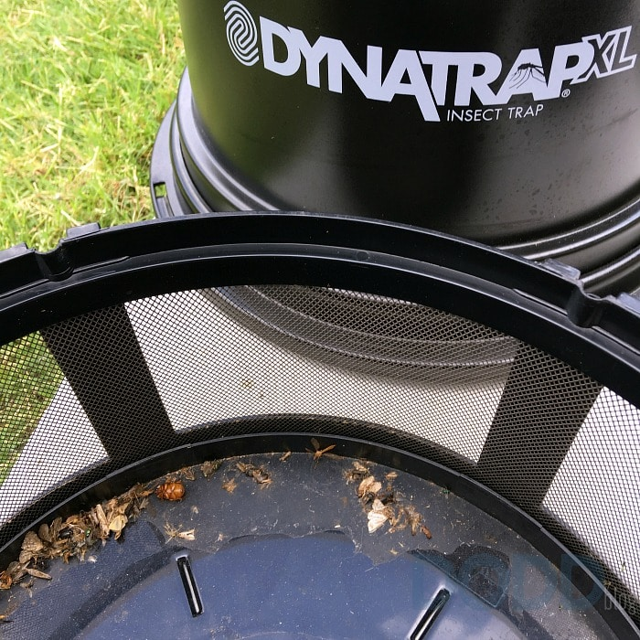 DynaTrap DT2000XLP