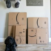 Amazon Smile Boxes