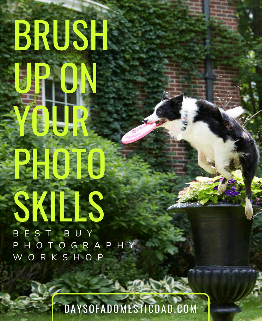 Brush Up on Your Photo Skills at a Best Buy Photography Workshop