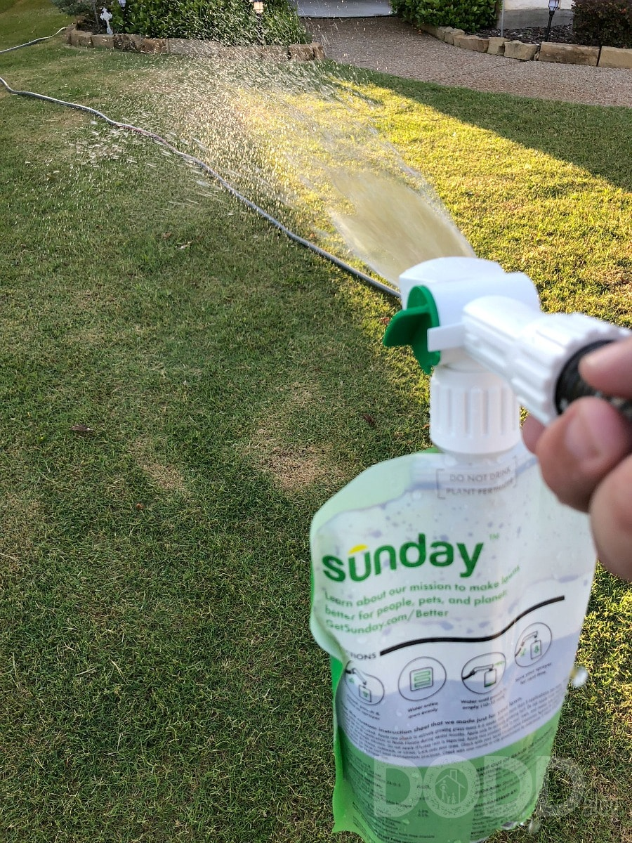 Strong and Healthy Lawn With Sunday Lawn Plans