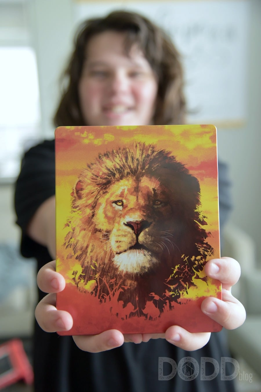 The Lion King SteelBook at Best Buy