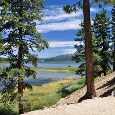 Top 8 Questions to Ask Before Renting a Cabin in Big Bear Lake