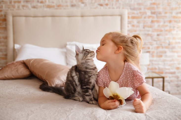 young girl laying on a pink bed, with a kitten. easy to care for cats or dogs
