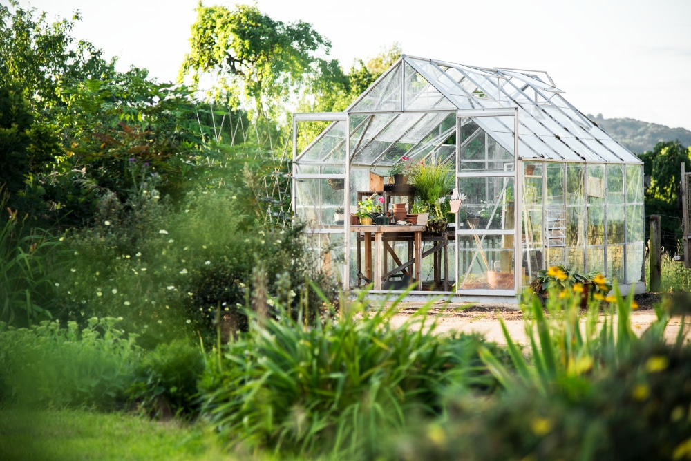 Things You Need To Consider When Buying A Greenhouse